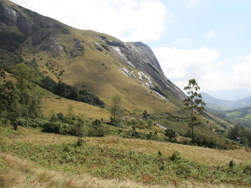 Anamudi, from Eravikulam National Park © J Thomas