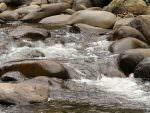 Andean stream © M O'Dell