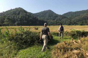 Walking towards Kakoijana Community Reserve Forest © J Thomas
